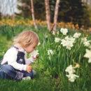 Giardini Sensoriali